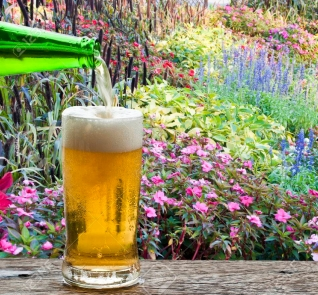 36373417-disfrute-de-la-cerveza-en-el-colorido-jardicc81n-de-flores-.jpg