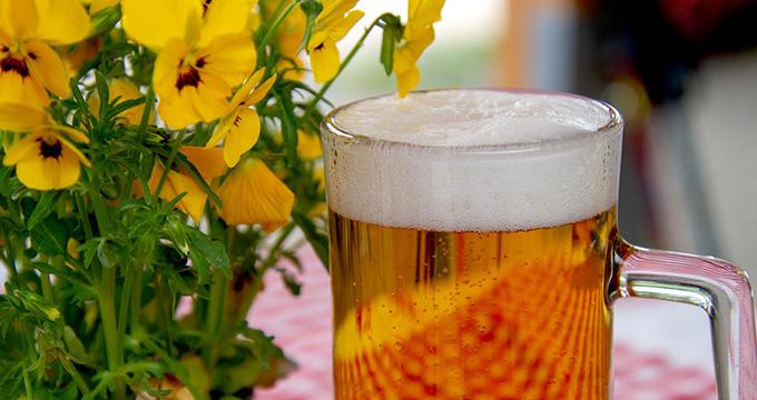 cerveza_001-pixabay_com